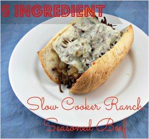 5 Ingredient Ranch Seasonsed Beef