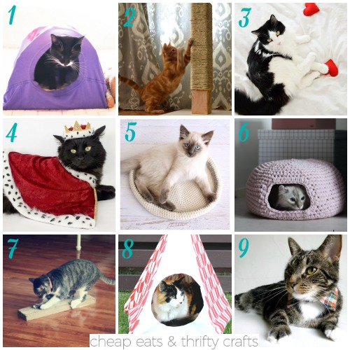 Cute Crafts for Cats