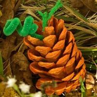 Precious Pine Cone Pumpkins